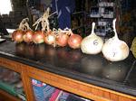 coovimag,concurso productos agrarios,cebollascoovimag,puertas abiertas,concurso productos agrarios,sandias,